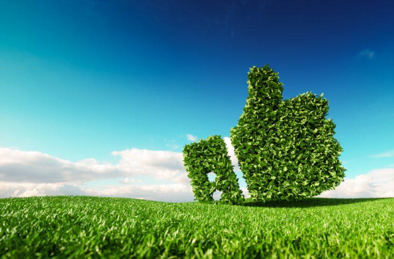 environnement eco-friendly