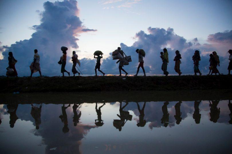 image d'illustration de migration