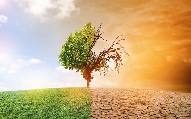 rechauffement climatique illustration